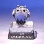 Engraved owl crystal figurine for graduation